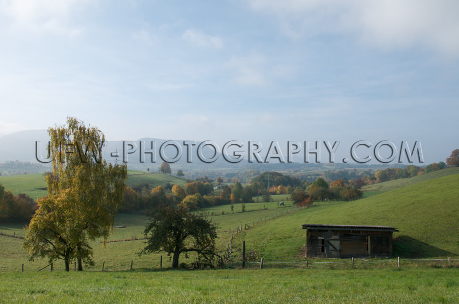 Herbst Hügel Landschaft Grün Weide Wiese Bunte Bäume Blau Wol