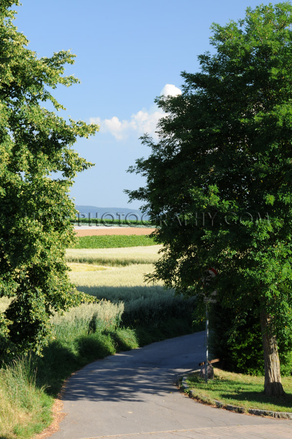 Kurvige Straße Feldweg Felder Bäume Ländlicher Himmel Stock F