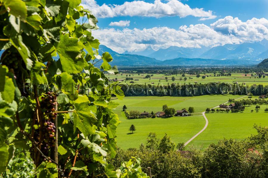 Landschaft Tal Schön Berg Weinrebe Weiden Blau Stock Foto