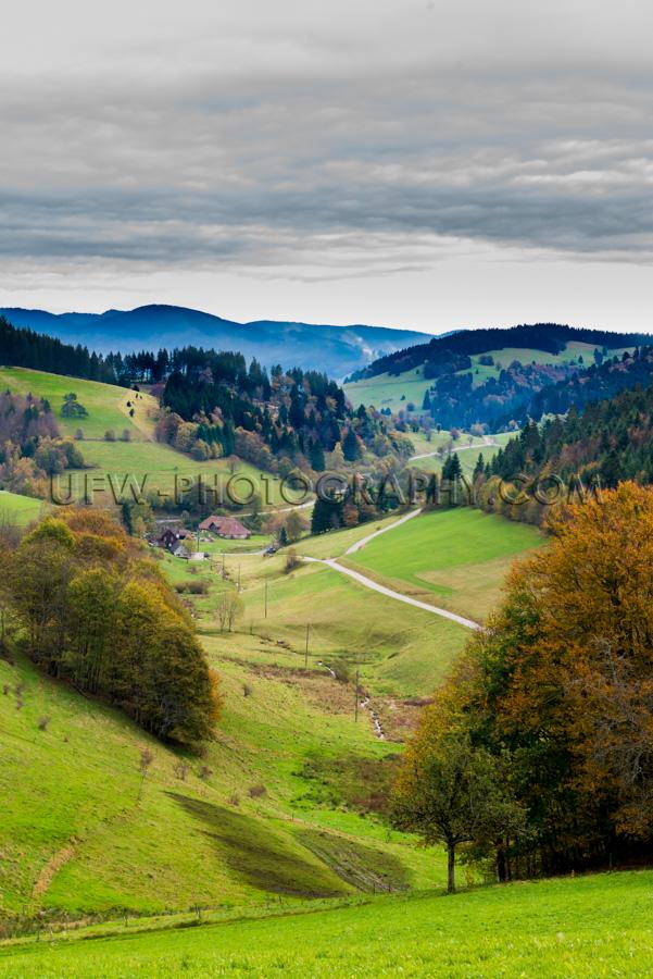 Wunderschön Wald Tal Landschaft Bäume Wiesen Herbst Hügel Ber