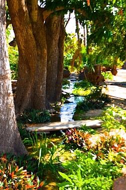 05.LaPaloma.creek.jpg