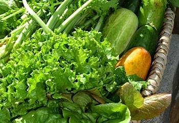 22.LaPaloma.veggies.jpg
