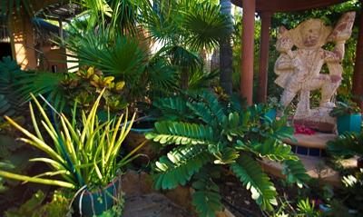 11.GardenHome.ext3.jpg