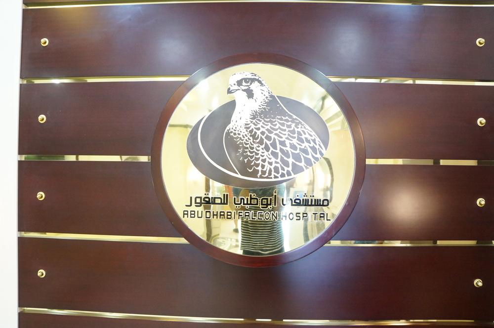 DSC09219.JPG