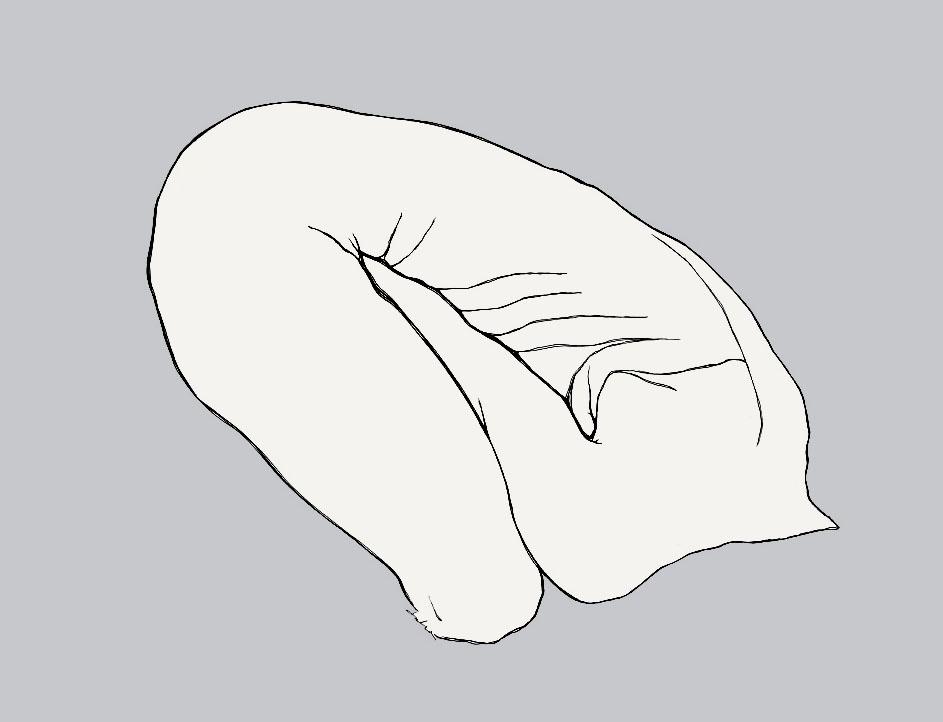 Bending Torso