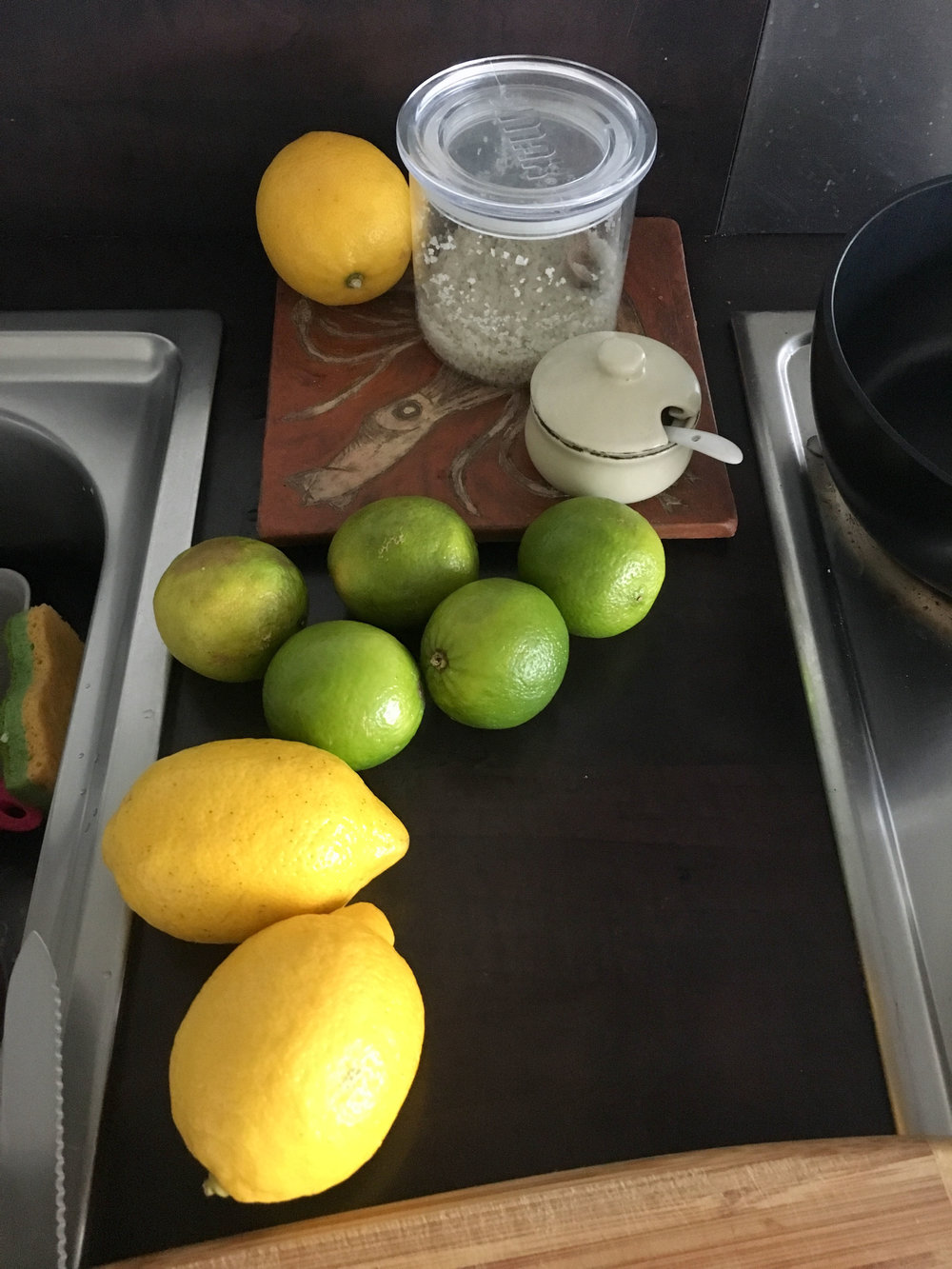 I buy bunch of lemons and limes quite often and squeezing anytime into anywhere. Specially in Summer for Lemon water!