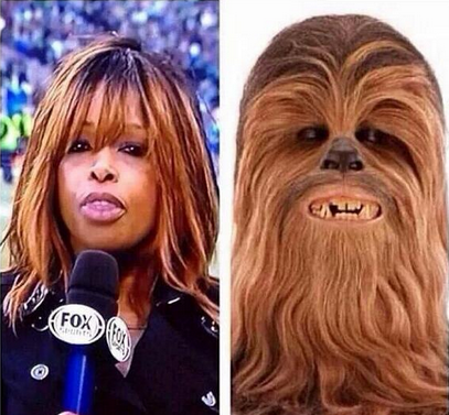 A popular meme poking fun at Pam Oliver's hair.