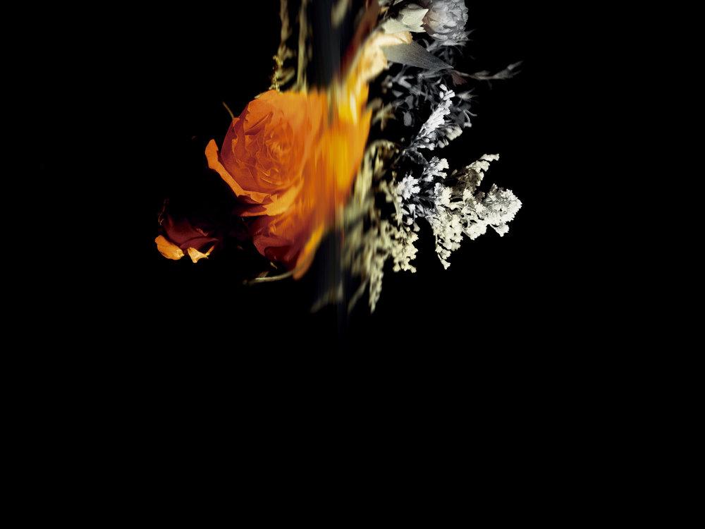 fireball16by12.jpg