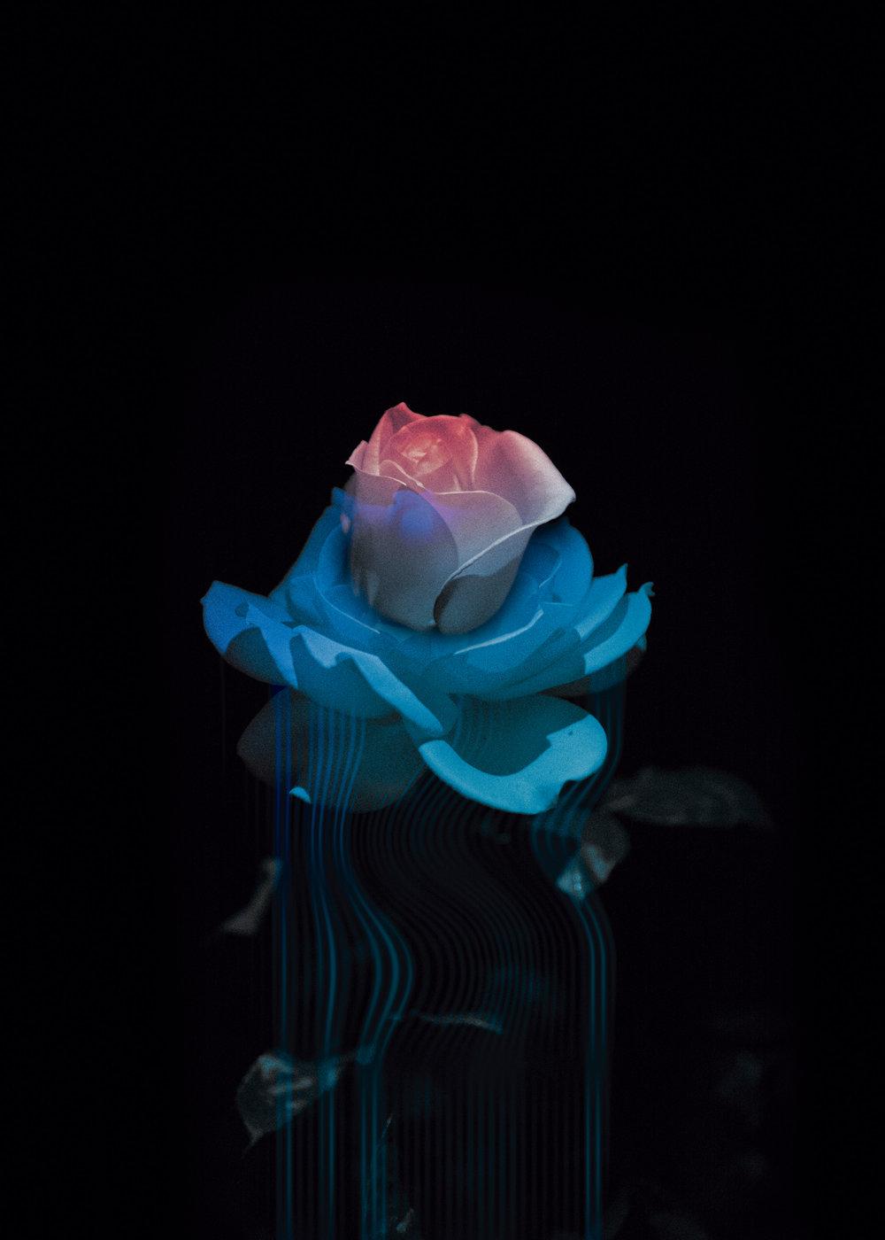 pink&blue10by14.jpg