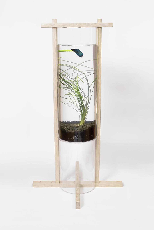 Column Aquarium