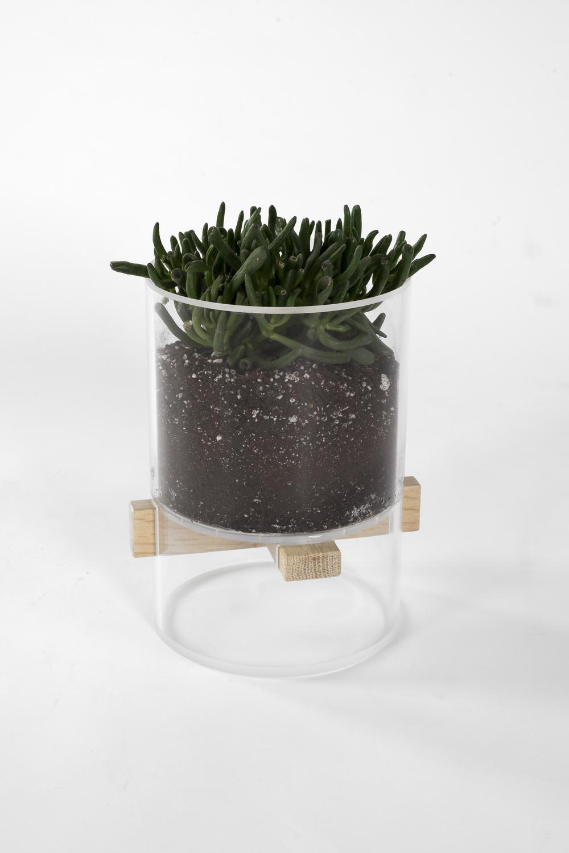 Extrusion Planter