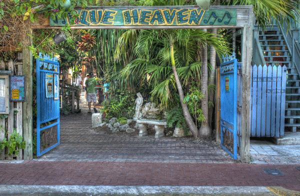 blue heaven image.png
