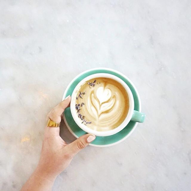 No caption needed!  Just take a sip!  #Repost @elizaellen ・・・ No insightful caption, this is just a photo of a lavender latte because it's pretty.