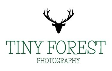 San Francisco Newborn, Family and Maternity Photographer; Tiny Forest Photography