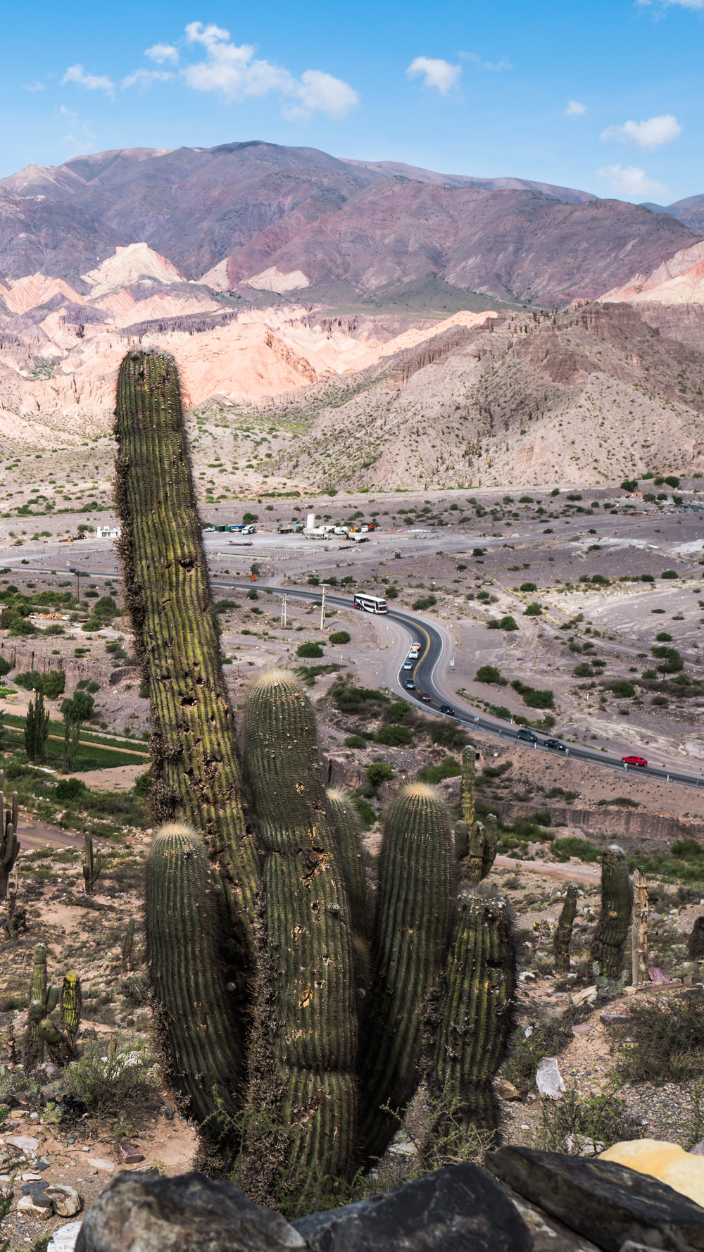 All hail to The Huge Cactus! at: Pucara de Tilcara