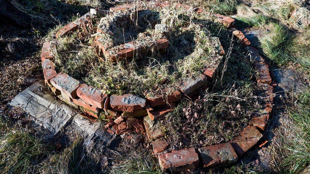Last year's first attempt to make a spiral herb garden!