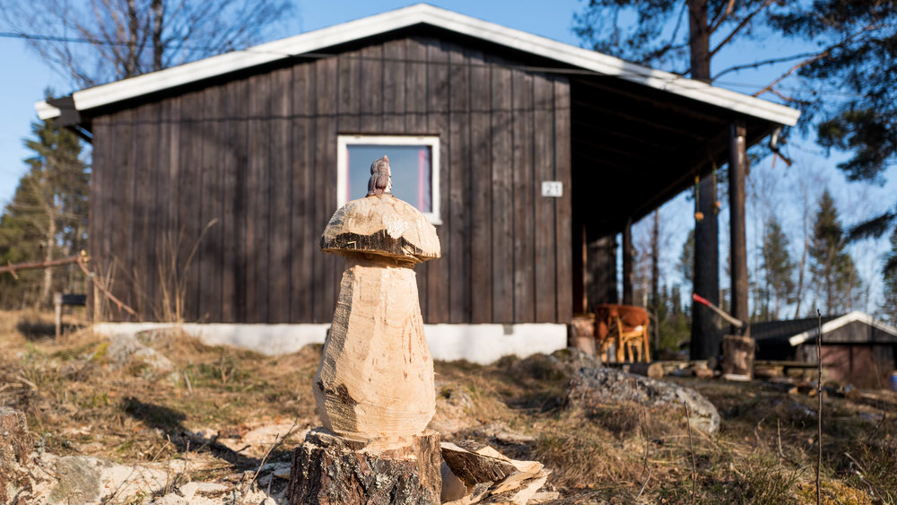 Asbjørn has been carving some wood mushrooms around the cabin!