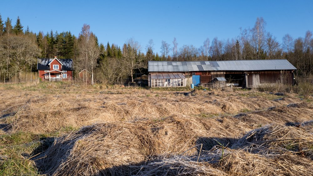 Njordstorp permaculture farm, it's spring but there is still risk for frost, so they didn't have the plants outside yet.