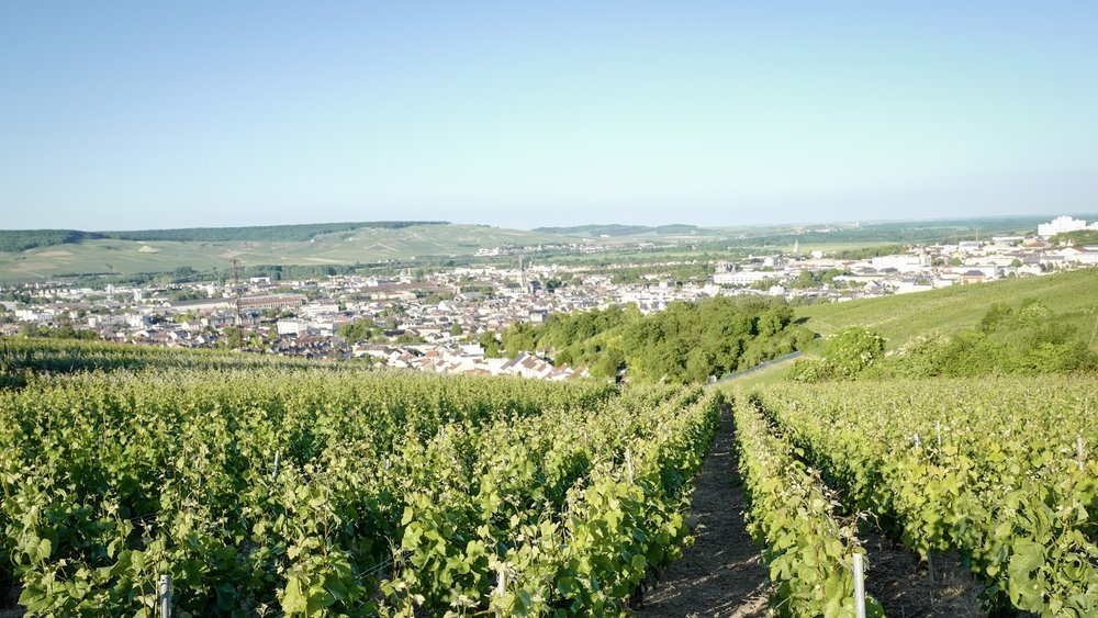 The view to Epernay from a near village: Hauteville, in Champagne-Ardenne.