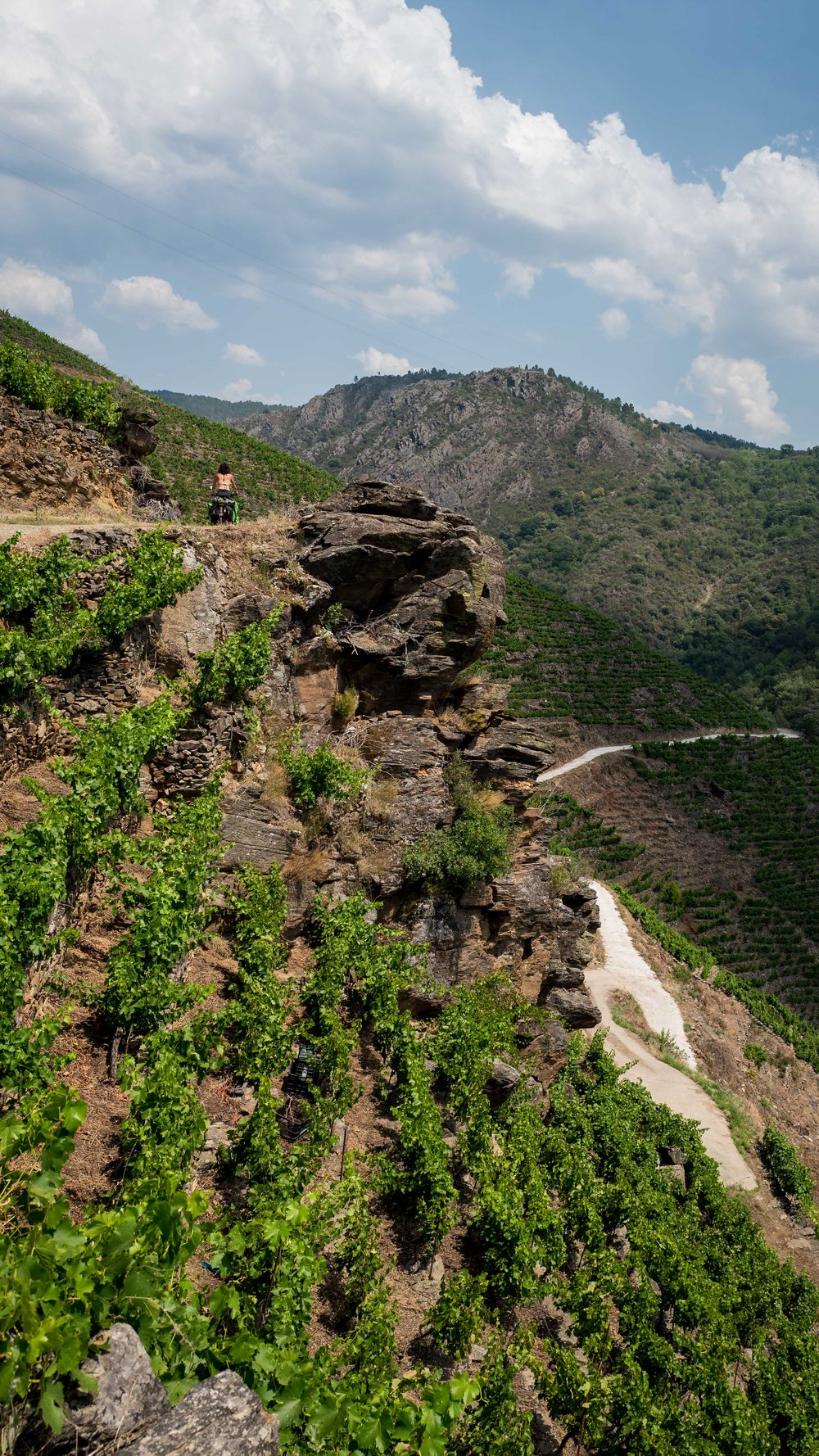 A different way of cultivating wine, using steep and narrow terraces