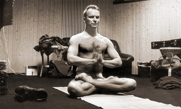 Sting-yoga-pose.jpg