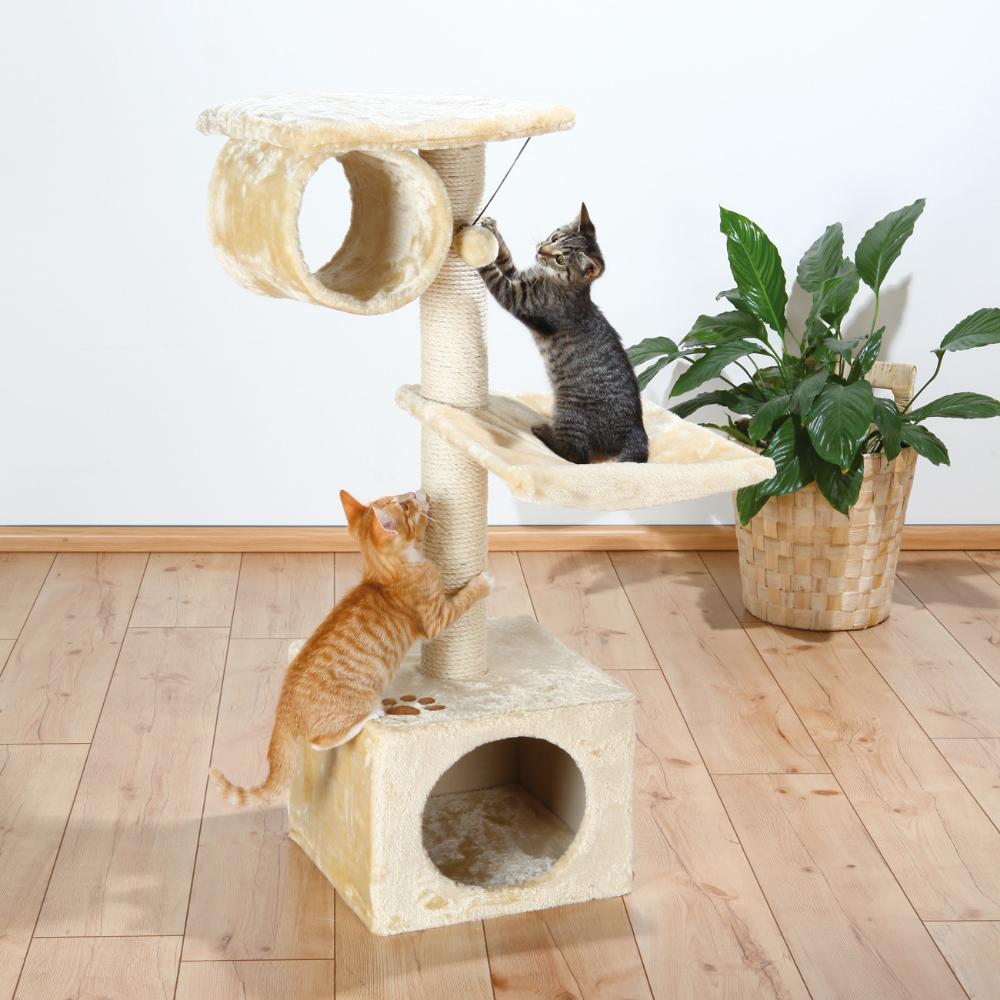 Cat furniture & fun toys!