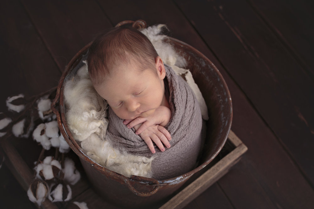 Snohomish County newborn photographer (8).jpg
