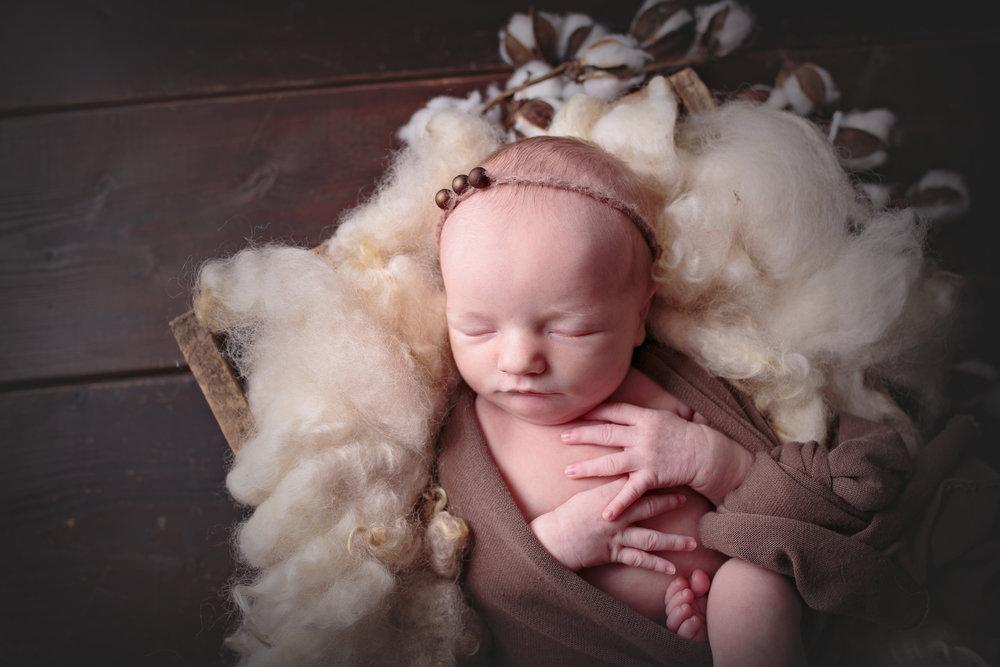 seattle newborn photographer (6).jpg