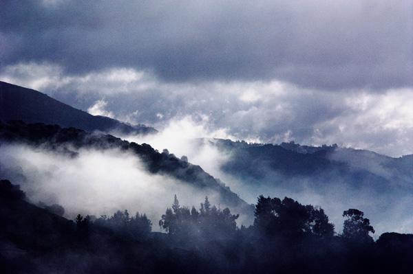 Fog11CCcrop copy.jpg