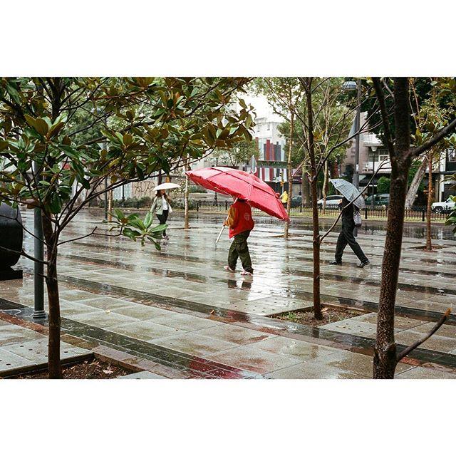 #Umbrella envy.