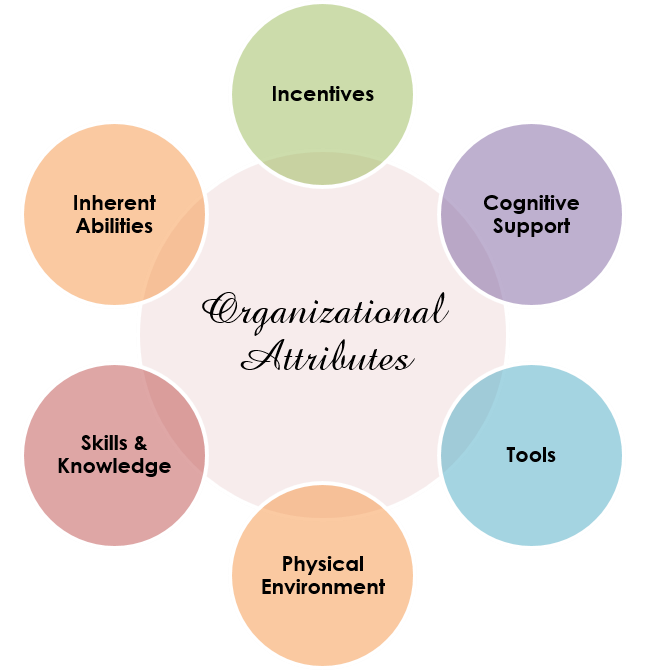 Organizational Attributes