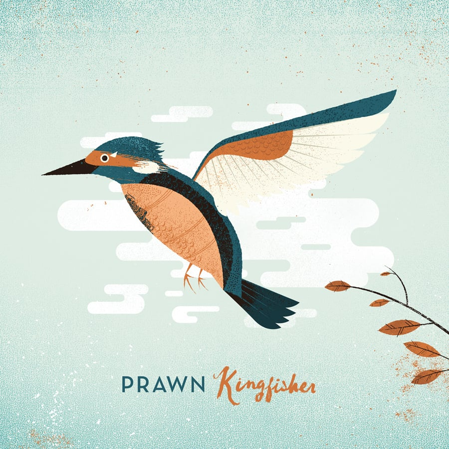 Kingfisher-Cover