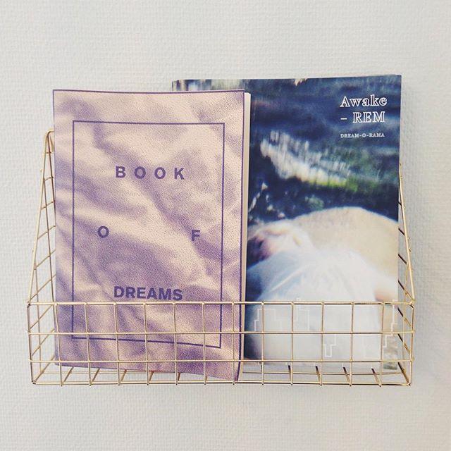 dreambooks_terese_thulin.jpg