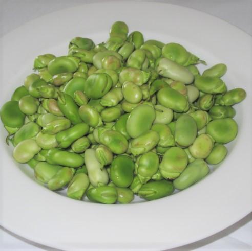 fresh broadbeans / fava beans