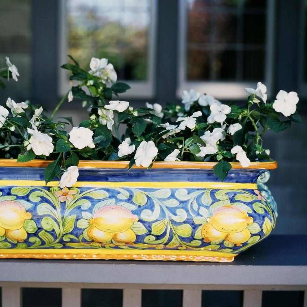 Tre Limoni rectangular planter.jpg