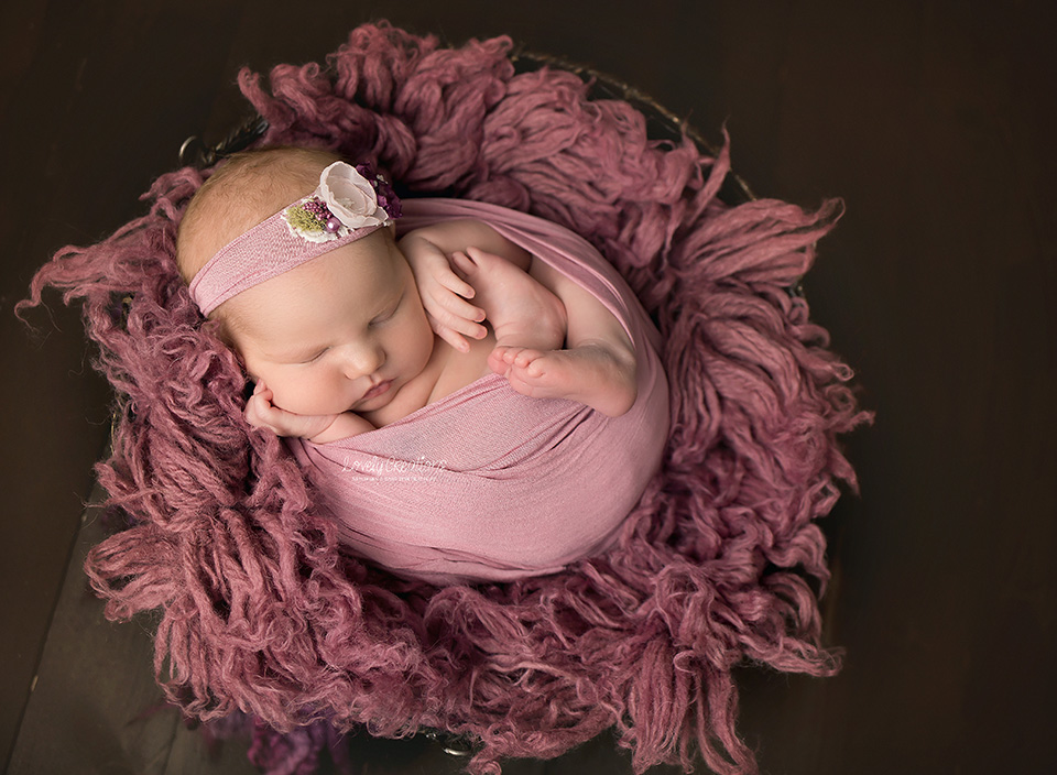 northbaynewbornphotographer15.jpg
