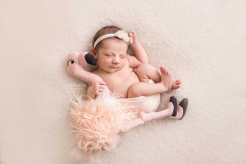 North Bay Newborn & Baby Photographer
