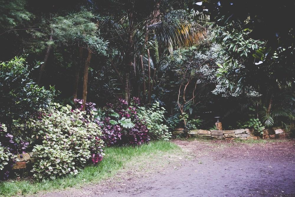 Wendy Whiteley Garden - PhotoKateLongley-0G4A26612016-6.jpg