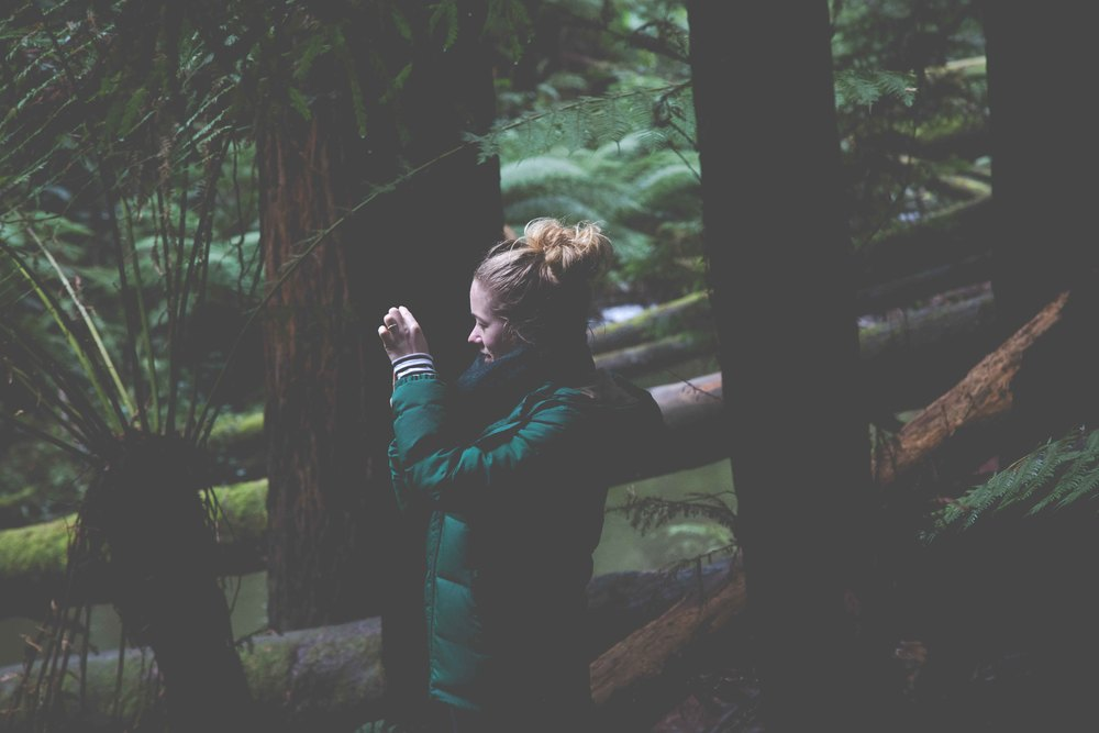 Bimbi  - photo KateLongley-0G4A9250-2016-6.jpg