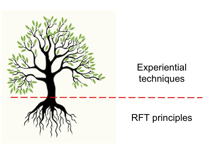 Using RFT in Experiential Practice