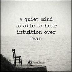 quiet mind.jpg