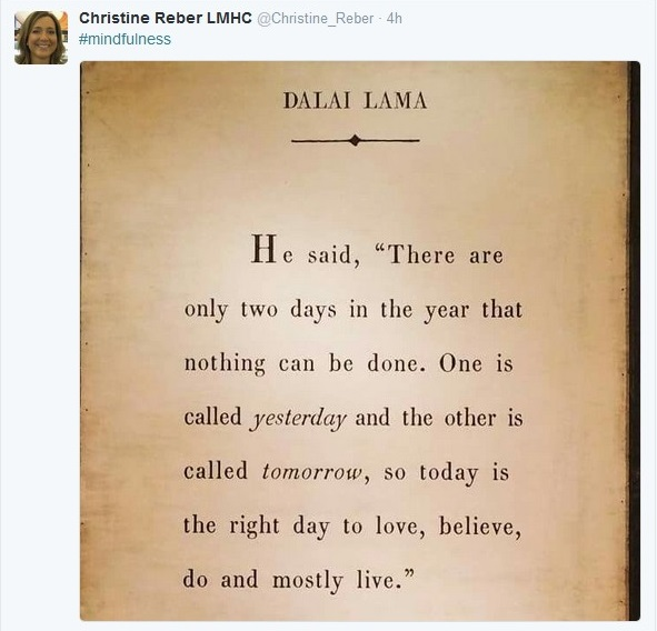 Lama via Christine Reber.jpg