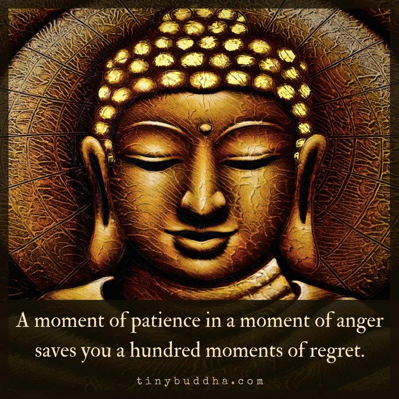 PatienceRegret.jpg