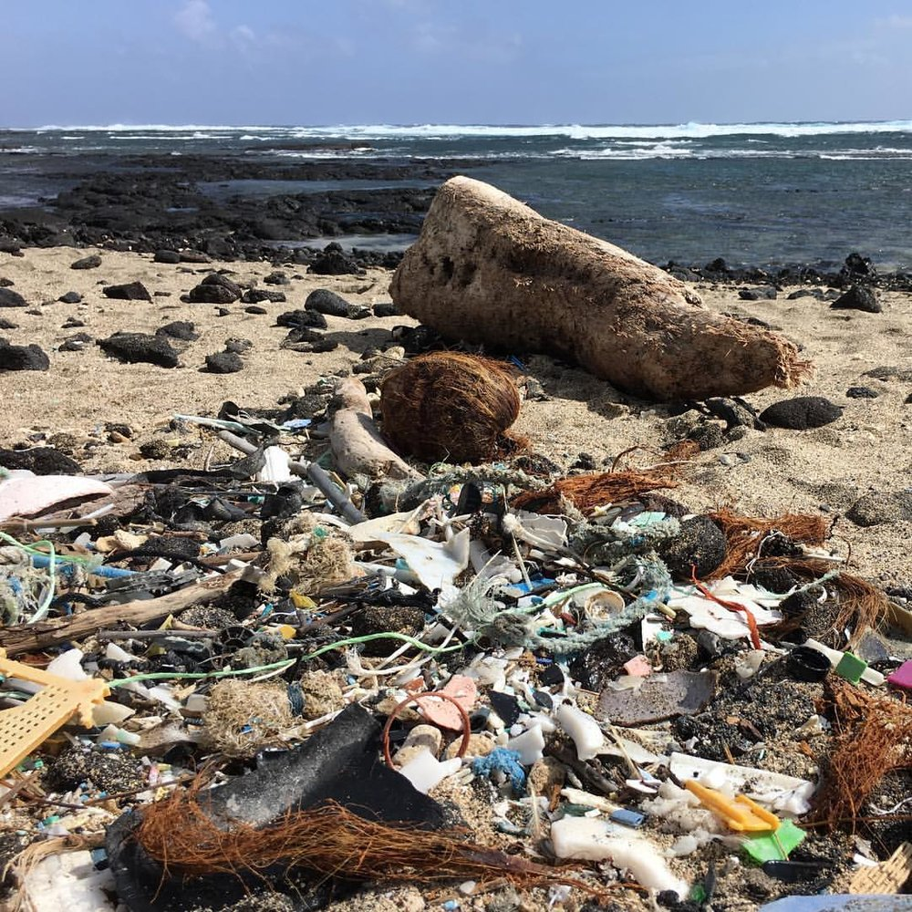 Far from pristine: The plastic-covered Kamilo Beach, Hawai'i.