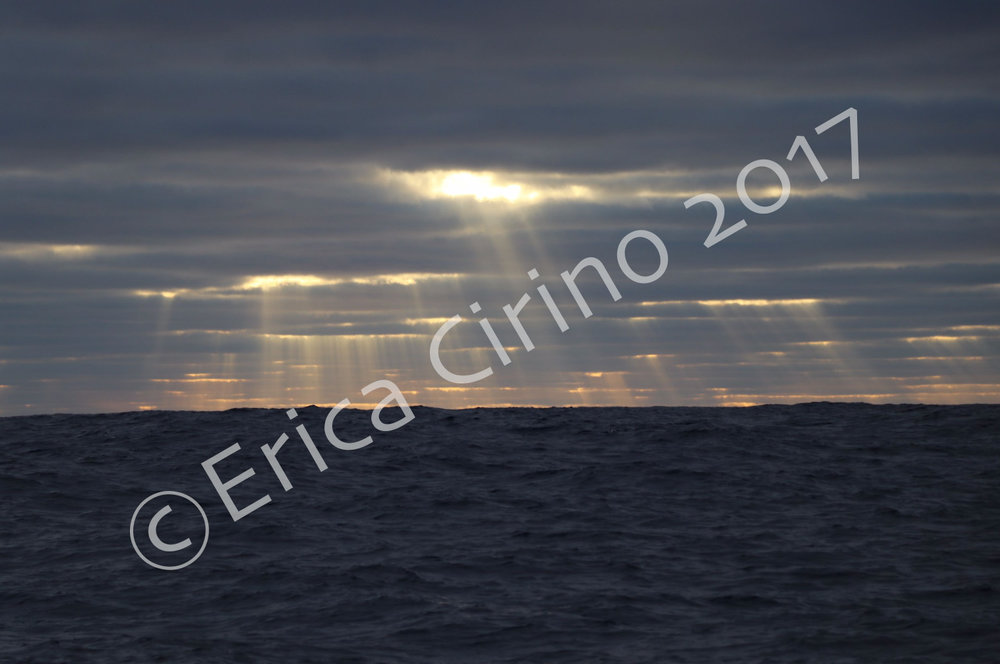 """""""Sun Rays on the Pacific"""" (Pacific Ocean). 8x10in. color photo print. $150.00"""