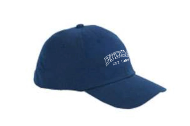 Adjustable Cap - Multiple Color Options Available$15