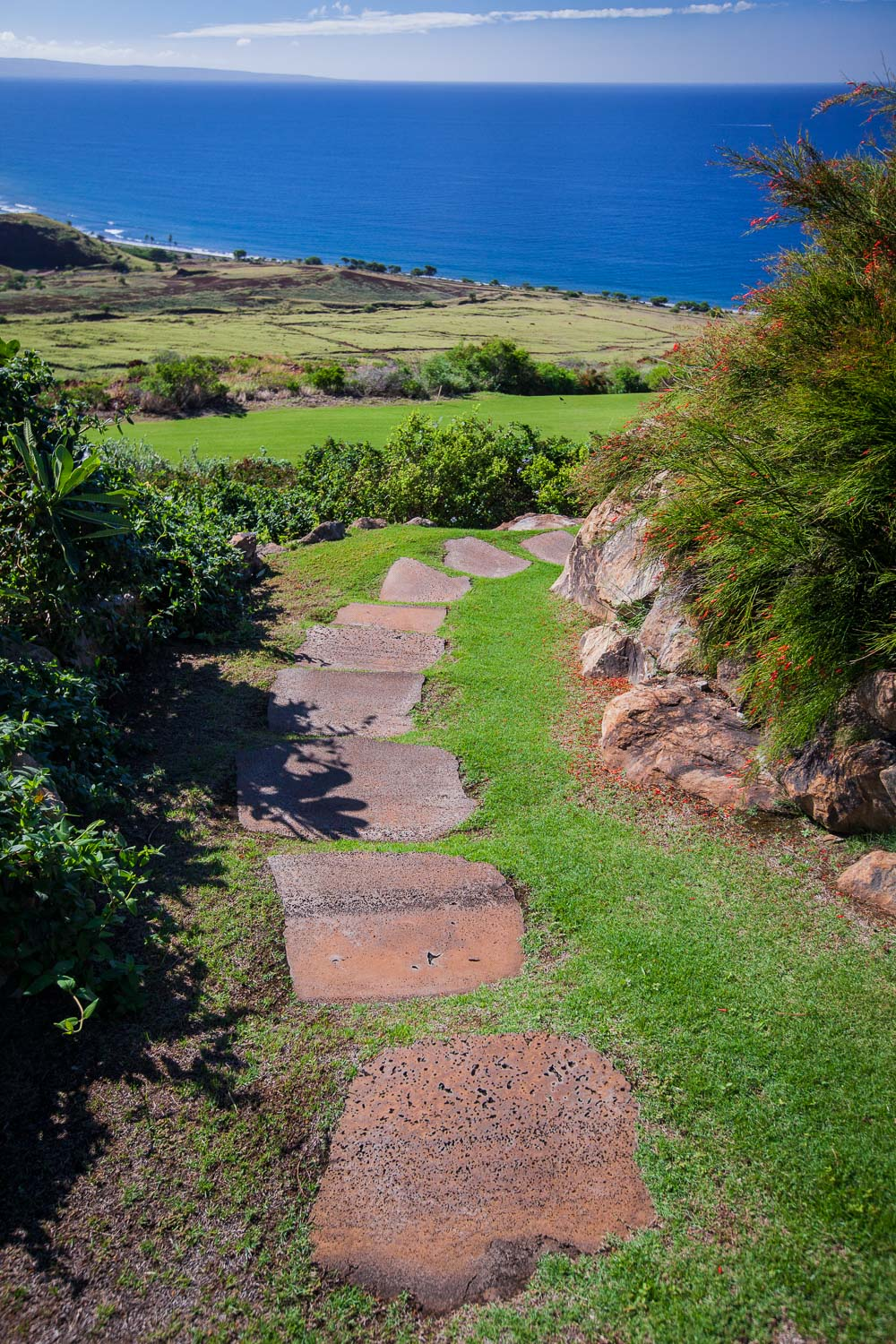 chris-curtis-landscapes-stone-walkway-towards-ocean.jpg