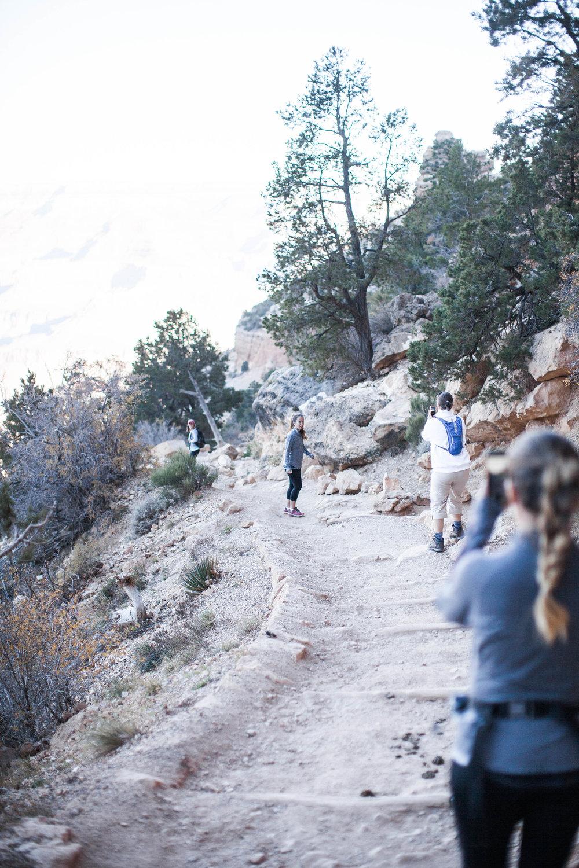 61 Grand Canyon2017.jpg