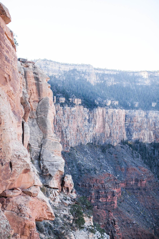 76 Grand Canyon2017.jpg
