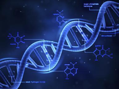 3-D_DNA.jpg
